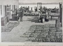 The Sardine Industry-3